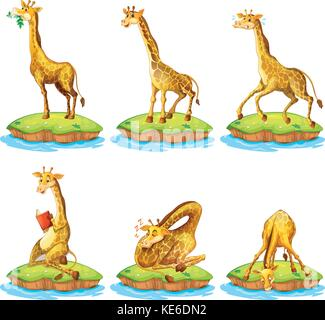 Giraffes in different actions on island illustration - Stock Photo