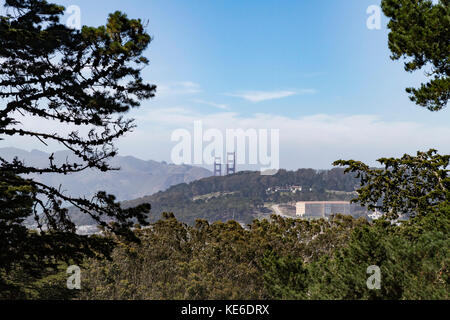 Follow the Buena Vista Park trails to the top and be rewarded with stunning San Francisco city views. From this - Stock Photo