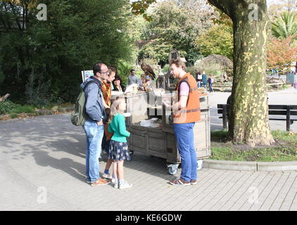 Zookeeper giving education about birds of prey, people visiting Rotterdam Blijdorp  zoo, The Netherlands. - Stock Photo