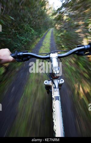 Mountain Biking On A Trail Through A Forest; Alaska, United States Of America - Stock Photo