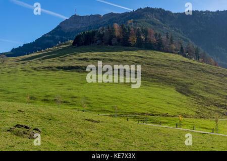Amazing view of Mount Rigi and Green meadows, Alps, Switzerland