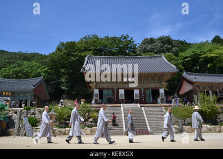 The Korean-Buddhist monks walking in a line. Pic was taken around Beomeosa in August  2017. Translation: 'Korean - Stock Photo