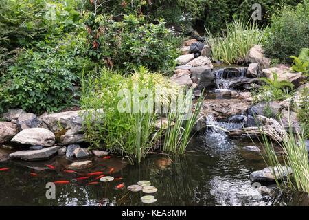 Garden Stream, Denver Botanic Gardens, Denver, Colorado, USA Stock ...