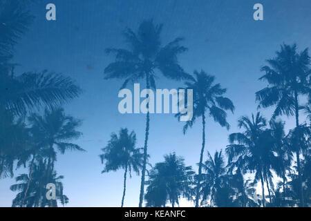 Blue Water Hotel Wadduwa Western Province Sri Lanka Reflections of Palm Trees in Swimming Pool - Stock Photo
