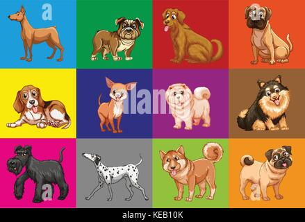 Different type of dogs in colored squares - Stock Photo