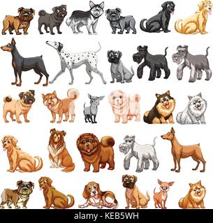 Different type of dogs small and big - Stock Photo