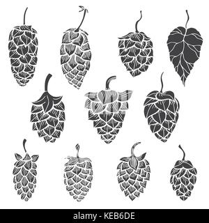 Set of Hops plant - Vector silhouettes isolated on white - Stock Photo