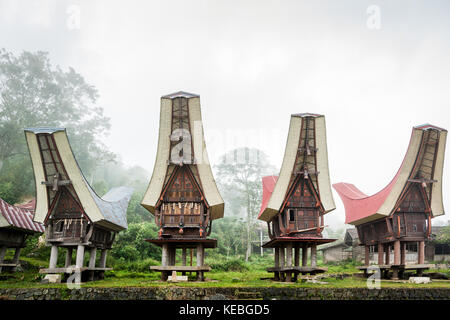 Highland mist with sturdy Rice Store structures in shape of Toraja Tongkonan. The traditional buildings of the Indigenous - Stock Photo