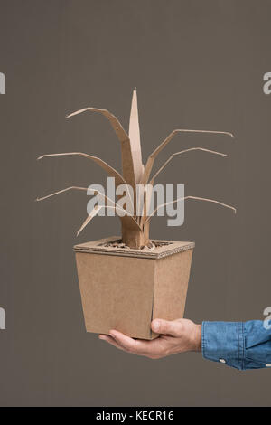 Hand holding a decorative plant made from recycled cardboard, crafts and creativity concept - Stock Photo