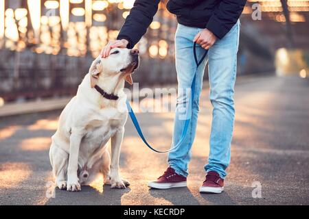Morning walk with dog. Young man with his labrador retriever on the iron bridge at the sunrise. - Stock Photo