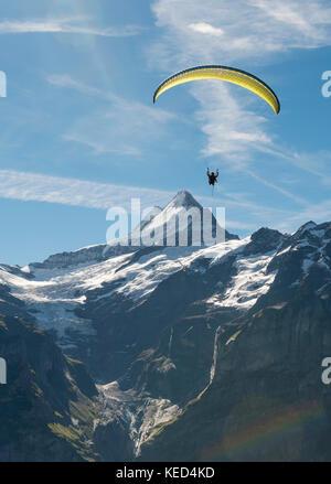 Paraglider flying in the sky, Großes Fiescherhorn, Eiger, Mönch, Jungfrau, Grindelwald, Switzerland - Stock Photo