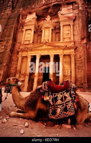 Bedouin camel rests near the treasury - Stock Photo