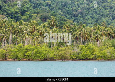 Tropical bay landscape with a palm trees in Thailand - Stock Photo