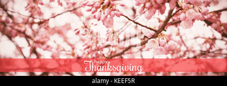 Digital generated image of thanksgiving greeting against cherry blossom tree in the park - Stock Photo