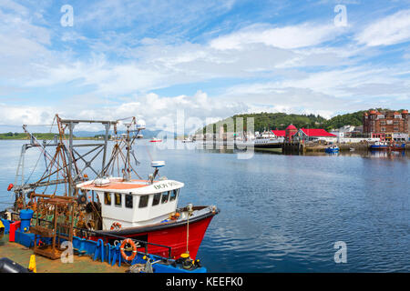 Fishing boat in the harbour, Oban, Argyll and Bute, Scotland, UK - Stock Photo