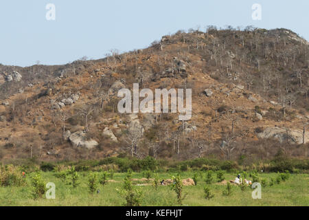 farmers in the field of agriculture. Angola, - Stock Photo