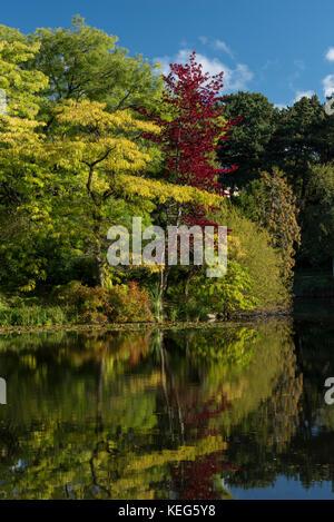 The lake in Botanical Gardens, Copenhagen, Denmark - Stock Photo