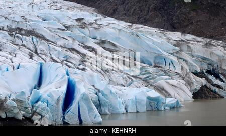 Mendenhall Glacier - Stock Photo