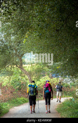Pilgrims on the Camino de Santiago PIlgrim's Way to Santiago de Compostela in Galicia, Spain - Stock Photo