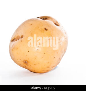 A potatoe isolated against a white background. - Stock Photo