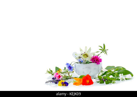 white mortar with herbs and . fresh medicinal plants and Preparing medicinal plants for phytotherapyand health beauty - Stock Photo