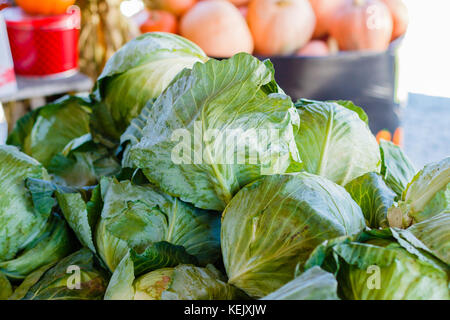 Fresh heads of cabbage at a produce stand. - Stock Photo