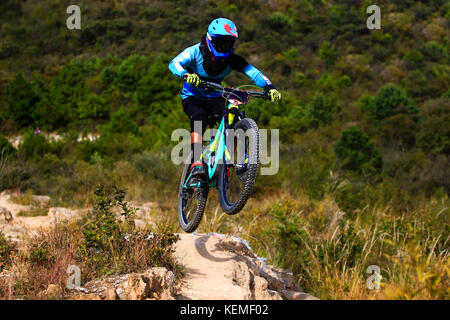 Downhill mountain biker on a blue bike with a black blue costume making a small jump over a drop - Stock Photo