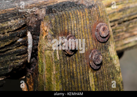 Rust Nail in old fence - Stock Photo
