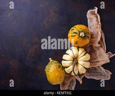 Decorative pumpkins on rusty background  - Stock Photo