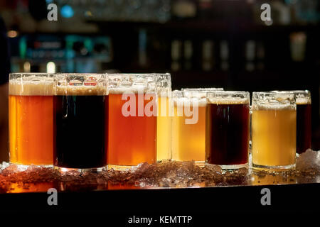 Different sorts of beer in pub. Assorted drinks in glasses for tasting. Assortment of fresh beer in bar. - Stock Photo