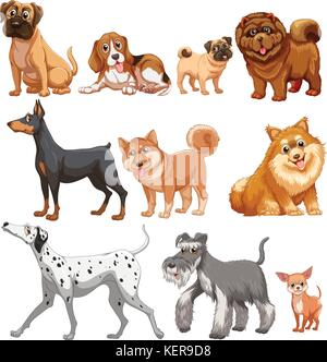 Illustration of different kind of dogs - Stock Photo