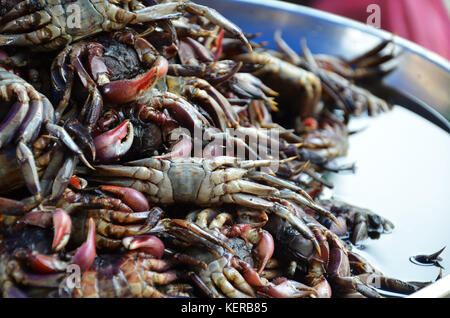 Food stall on the street that selling crab - Stock Photo