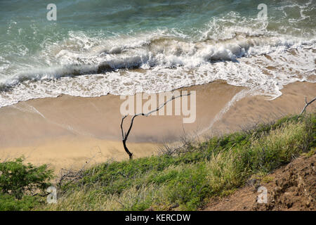 Beachfront overlook - Oahu, Hawaii - Stock Photo