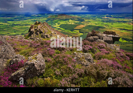 Pastoral Fields streching to the horizon, interupted by Croghaun. View  from above Coumshingaun Lake, Comeragh Mountains, - Stock Photo