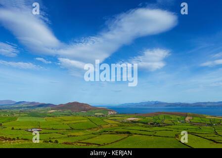 Small Green Fields in an Irish Rural Landscape, Near Bull's Head, Dingle Peninsula, County Kerry, Ireland - Stock Photo