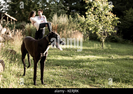 Young Couple playing with dog outside - Stock Photo