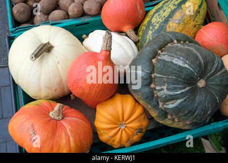 selection of gourds outside greengrocers store, fakenham, norfolk, england - Stock Photo