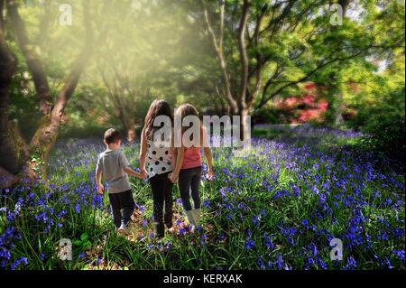 Children walking hand in hand through bluebell woods - Stock Photo