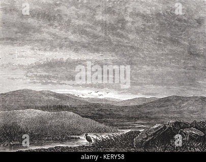 The Field of Culloden, 16 April 1746 - Stock Photo