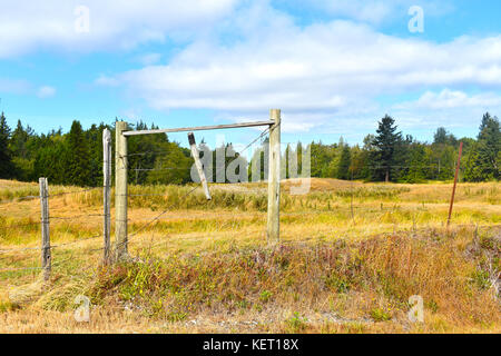 Beautiful surreal country pastoral scene with open field beyond a wooden fence.  Evergreens are in the back with - Stock Photo