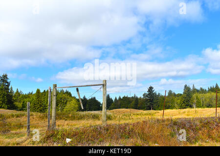 Beautiful surreal country pastoral scene with open field beyond a wooden fence.  Evergreen trees in the background - Stock Photo