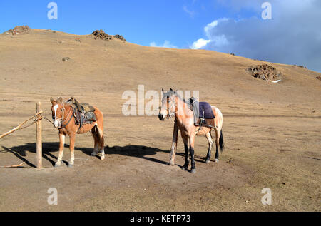 Pictures taken during a 3-day horse riding trek in Kyrgyzstan at Song Kol lake. Mountains, landscapes, Steppe and - Stock Photo