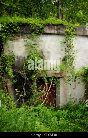 AJAXNETPHOTO. 25TH JUNE, 2014. OBERSALZBURG, GERMANY. - RUINED ENTRANCE TO BUNKERS BELOW MARTIN BORMANN'S HOUSE - Stock Photo