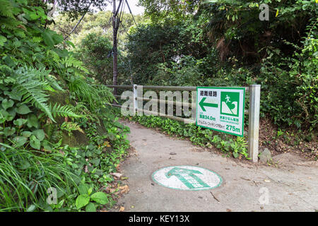 arrow direction sign on the public road and tsunami evacuation place route sign in japan - Stock Photo