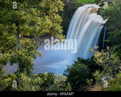 New Zealand, North Island, Whangarei Falls - Stock Photo