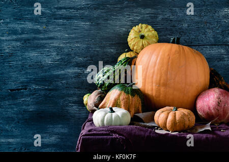 closeup of an assortment of different pumpkins on a table against a gray rustic wooden background with a blank space - Stock Photo