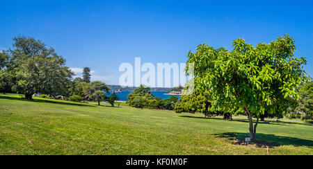 Australia, New South Wales, Sydney, Royal Botanic Garden forms a large natural amphitheatre, wrapped around and - Stock Photo