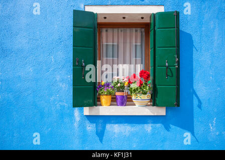 VENICE ITALY VENICE blue walls window with green shutters and pots of flowers Burano Italy eu europe - Stock Photo