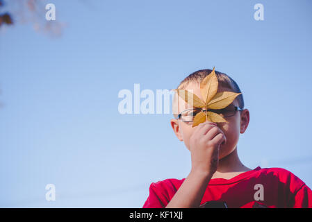 10-11 year old boy holding leaf in front of face - Stock Photo