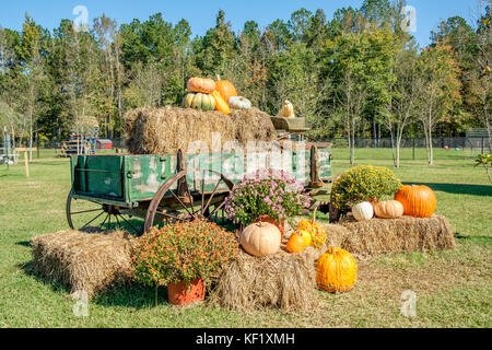 Old farm wagon decorated with pumpkins, gourds, hay bales and flowers for the American Halloween holiday, in rural - Stock Photo